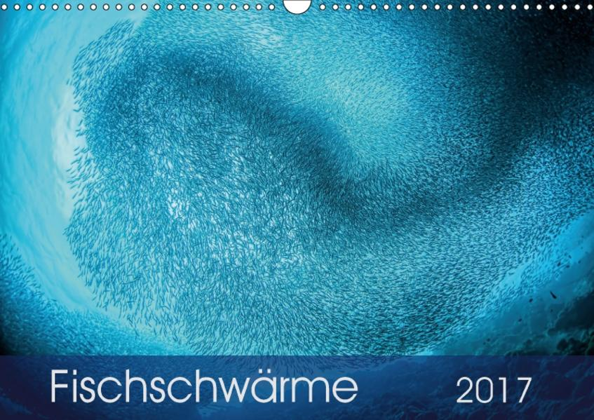 Fischschwärme (Wandkalender 2017 DIN A3 quer) - Coverbild