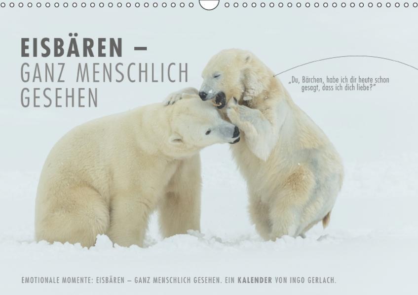 Emotionale Momente: Eisbären - ganz menschlich gesehen. (Wandkalender 2017 DIN A3 quer) - Coverbild
