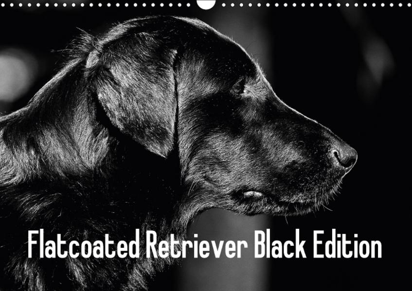 Flatcoated Retriever Black Edition (Wandkalender 2017 DIN A3 quer) - Coverbild