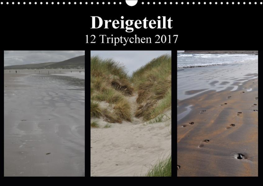 Dreigeteilt - 12 Triptychen 2017 (Wandkalender 2017 DIN A3 quer) - Coverbild