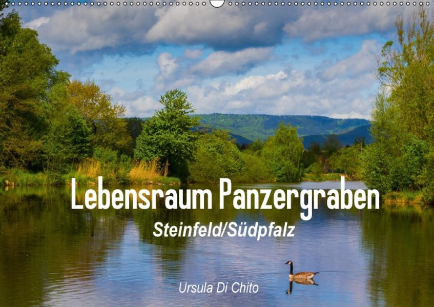 Lebensraum Panzergraben (Wandkalender 2017 DIN A2 quer) - Coverbild