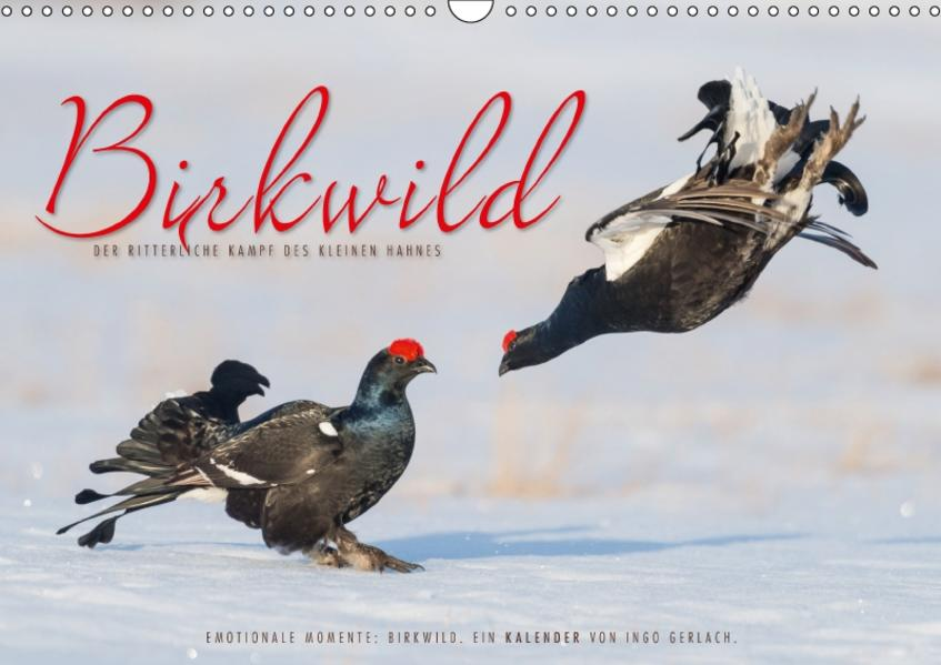 Emotionale Momente: Birkwild (Wandkalender 2017 DIN A3 quer) - Coverbild