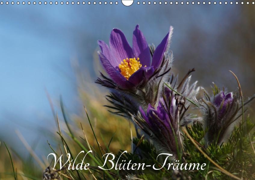 Wilde Blüten-Träume (Wandkalender 2017 DIN A3 quer) - Coverbild