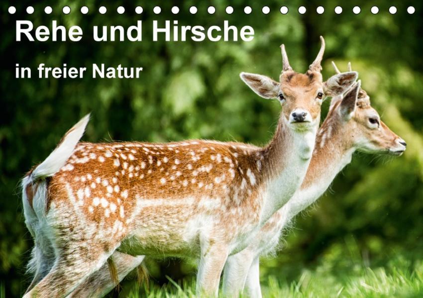 Rehe und Hirsche in freier Natur (Tischkalender 2017 DIN A5 quer) - Coverbild