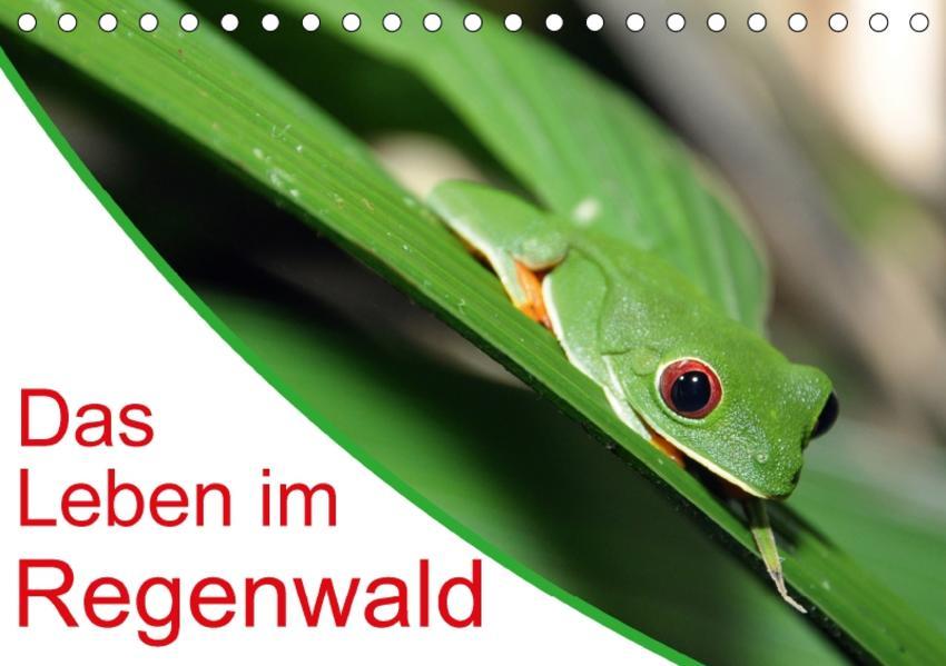 Das Leben im Regenwald (Tischkalender 2017 DIN A5 quer) - Coverbild