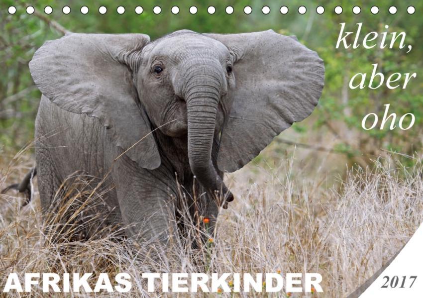 AFRIKAS TIERKINDER - klein, aber oho (Tischkalender 2017 DIN A5 quer) - Coverbild