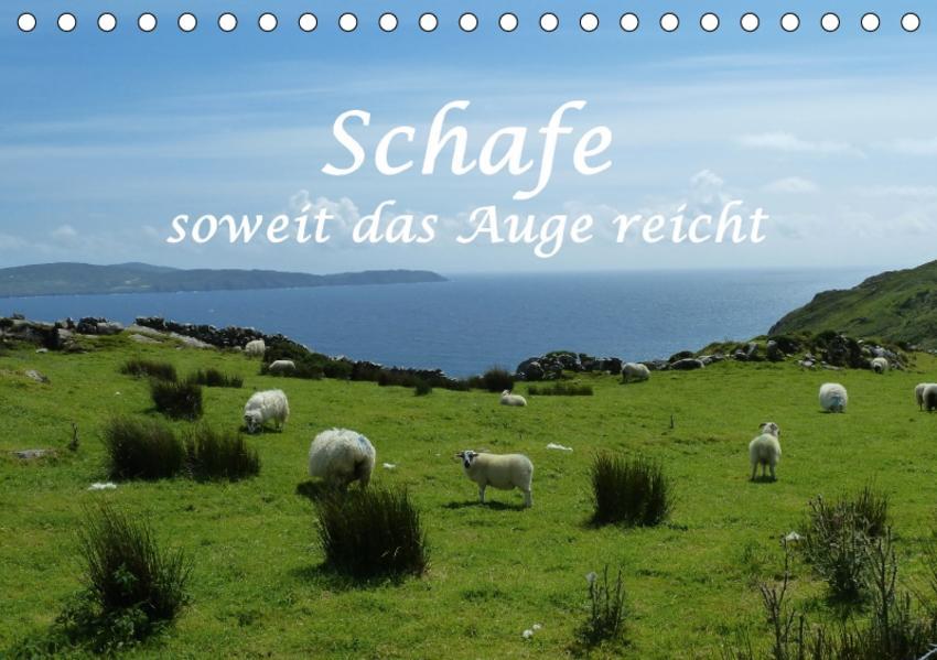 Schafe - soweit das Auge reicht (Tischkalender 2017 DIN A5 quer) - Coverbild