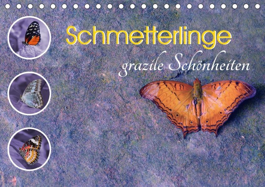 Schmetterlinge grazile Schönheiten (Tischkalender 2017 DIN A5 quer) - Coverbild