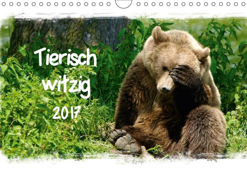 Tierisch witzig (Wandkalender 2017 DIN A4 quer) - Coverbild