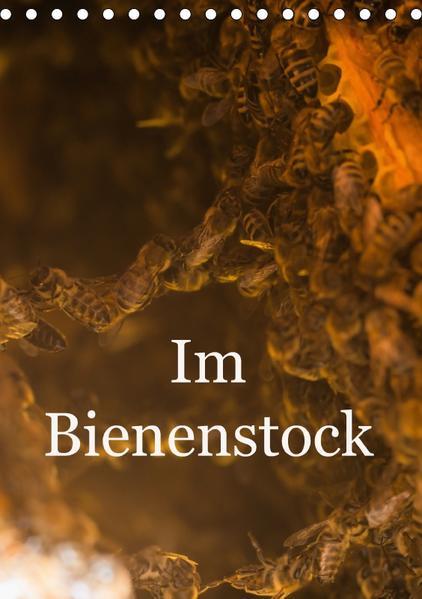Im Bienenstock (Tischkalender 2017 DIN A5 hoch) - Coverbild