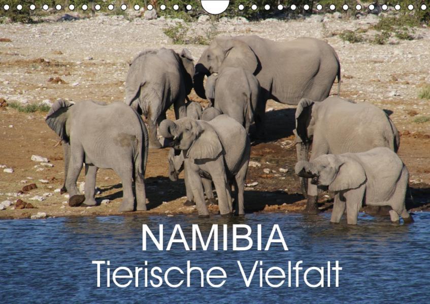 Namibia - Tierische Vielfalt (Wandkalender 2017 DIN A4 quer) - Coverbild