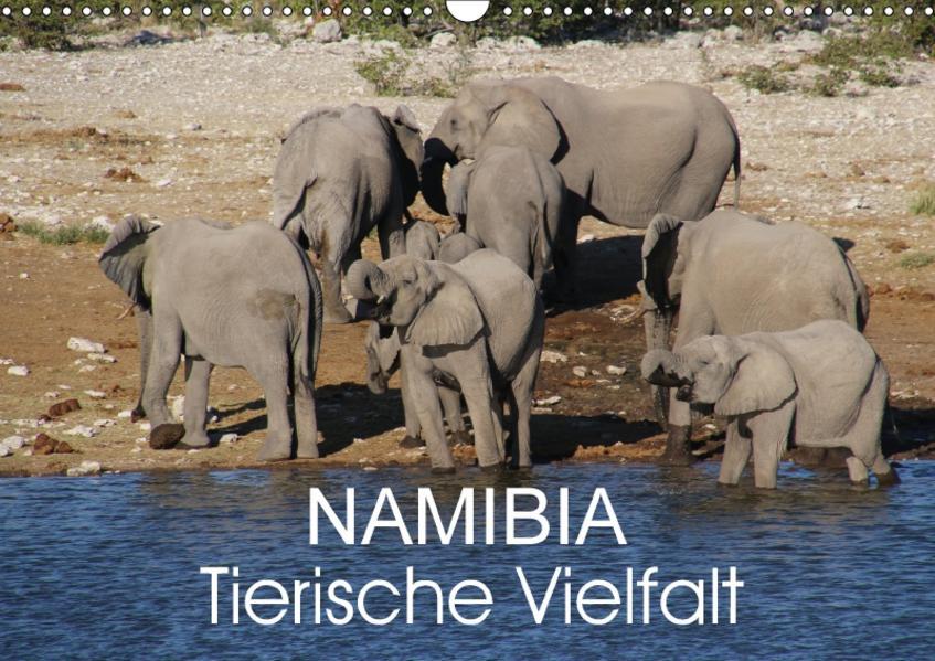 Namibia - Tierische Vielfalt (Wandkalender 2017 DIN A3 quer) - Coverbild