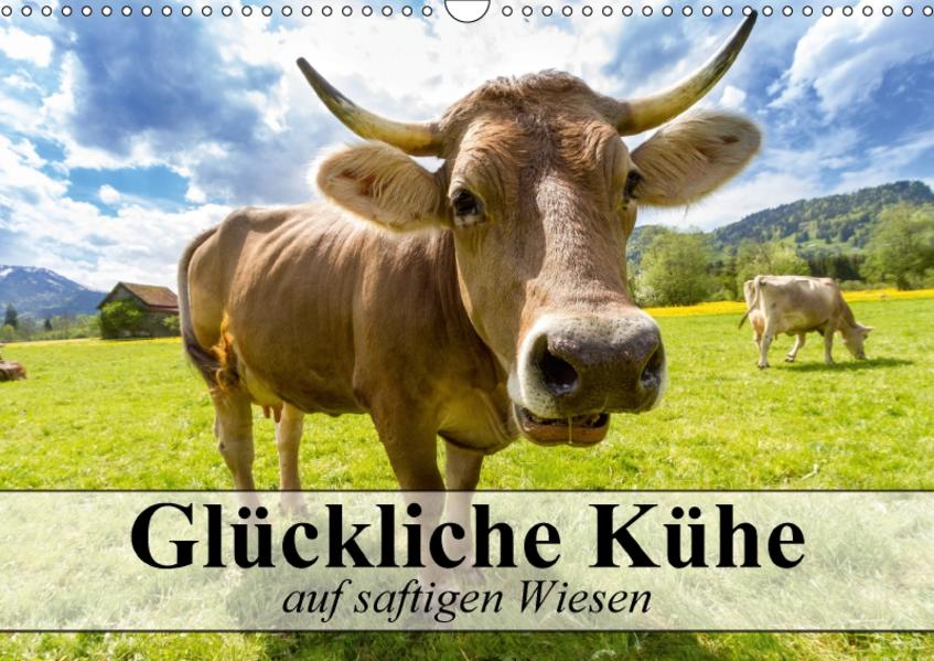 Glückliche Kühe auf saftigen Wiesen (Wandkalender 2017 DIN A3 quer) - Coverbild