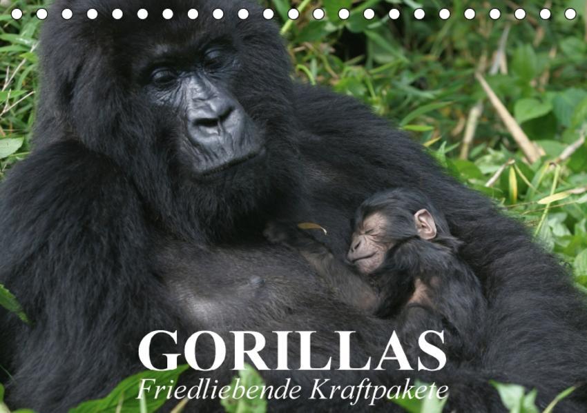 Gorillas. Friedliebende Kraftpakete (Tischkalender 2017 DIN A5 quer) - Coverbild