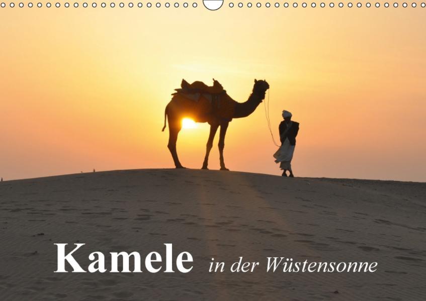 Kamele in der Wüstensonne (Wandkalender 2017 DIN A3 quer) - Coverbild