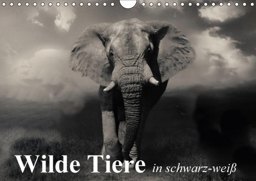 Wilde Tiere in schwarz-weiß (Wandkalender 2017 DIN A4 quer) - Coverbild