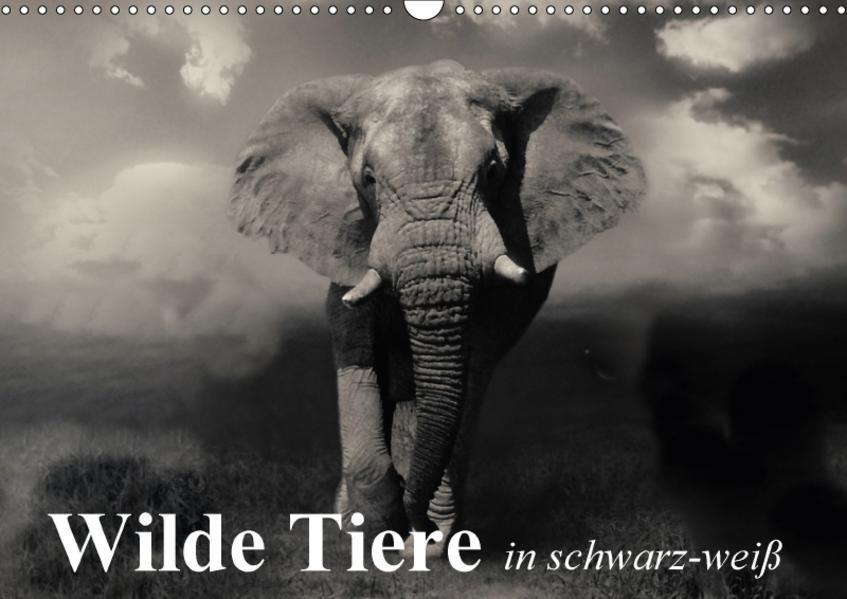 Wilde Tiere in schwarz-weiß (Wandkalender 2017 DIN A3 quer) - Coverbild