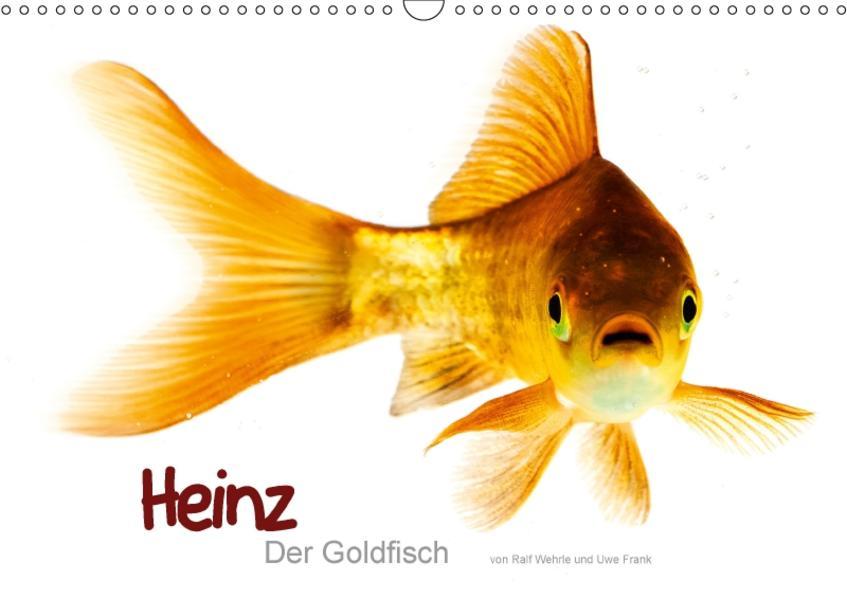 Heinz – Der Goldfisch (Wandkalender 2017 DIN A3 quer) - Coverbild