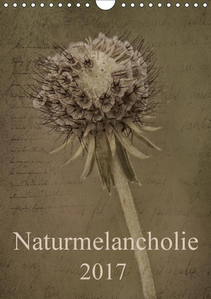 Naturmelancholie 2017 (Wandkalender 2017 DIN A4 hoch) - Coverbild