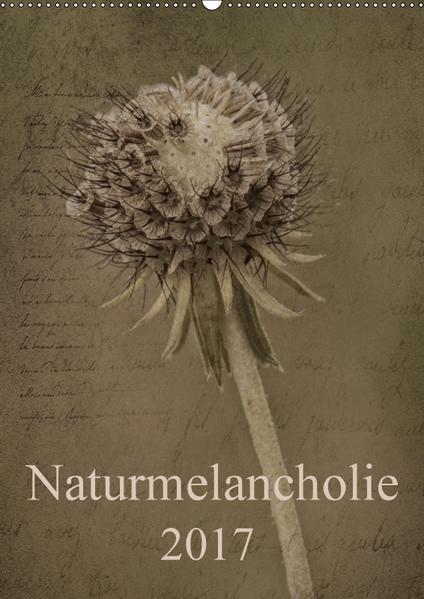 Naturmelancholie 2017 (Wandkalender 2017 DIN A2 hoch) - Coverbild