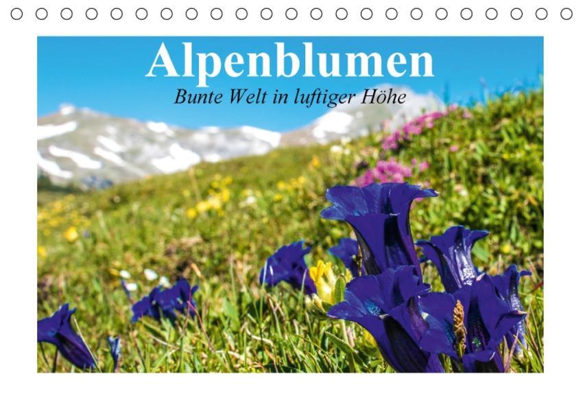Alpenblumen. Bunte Welt in luftiger Höhe (Tischkalender 2017 DIN A5 quer) - Coverbild
