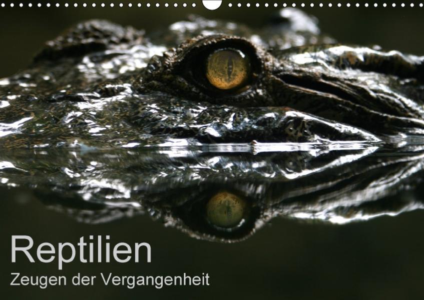 Reptilien - Zeugen der Vergangenheit (Wandkalender 2017 DIN A3 quer) - Coverbild