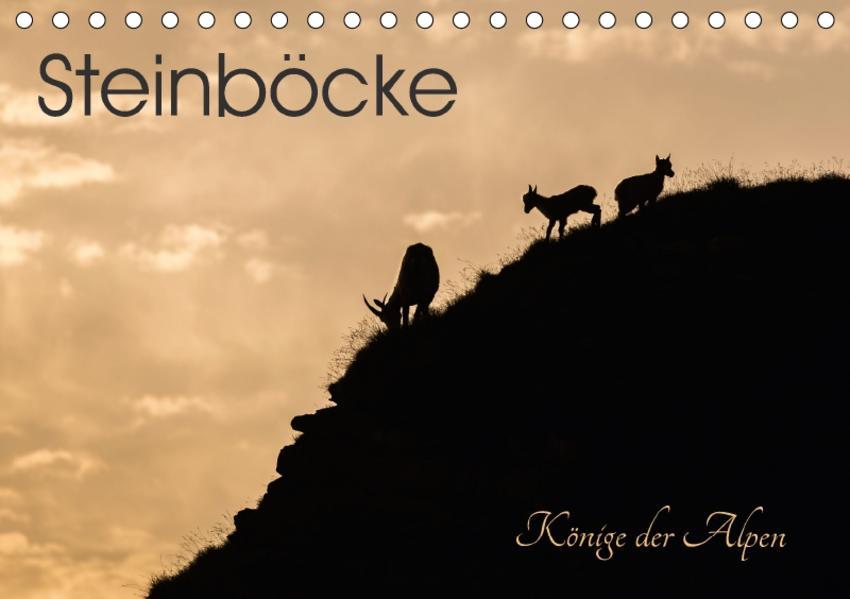 Steinböcke - Könige der Alpen (Tischkalender 2017 DIN A5 quer) - Coverbild