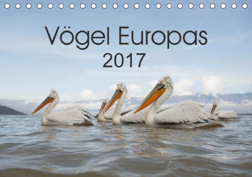 Vögel Europas 2017 (Tischkalender 2017 DIN A5 quer) - Coverbild