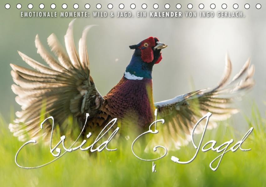 Emotionale Momente: Wild und Jagd. (Tischkalender 2017 DIN A5 quer) - Coverbild