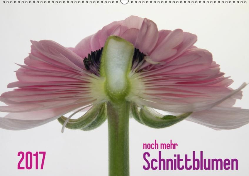 2017 - noch mehr SCHNITTBLUMEN (Wandkalender 2017 DIN A2 quer) - Coverbild