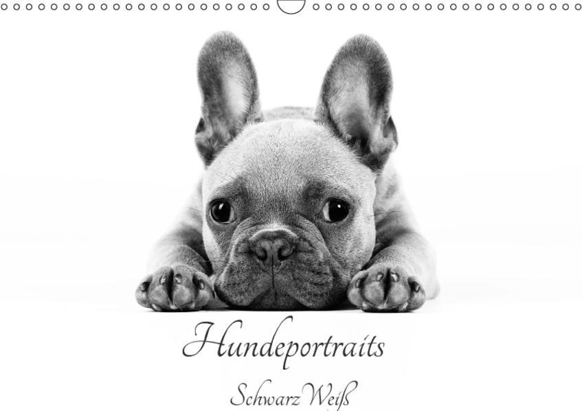 Hundeportraits SchwarzWeiß (Wandkalender 2017 DIN A3 quer) - Coverbild