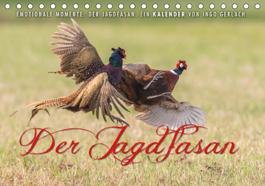 Emotionale Momente: Der Jagdfasan. (Tischkalender 2017 DIN A5 quer) - Coverbild