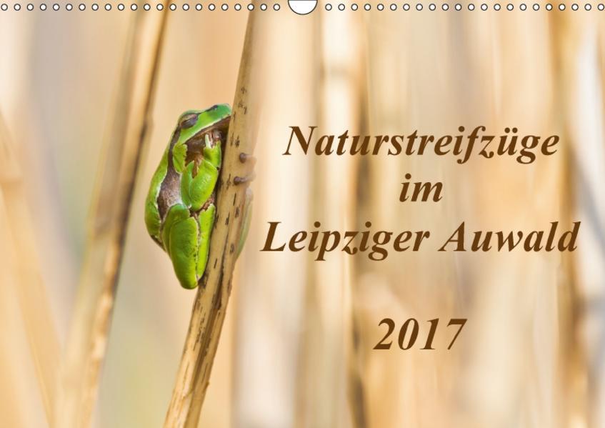 Naturstreifzüge im Leipziger Auwald (Wandkalender 2017 DIN A3 quer) - Coverbild