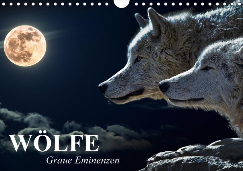 Wölfe. Graue Eminenzen (Wandkalender 2017 DIN A4 quer) - Coverbild