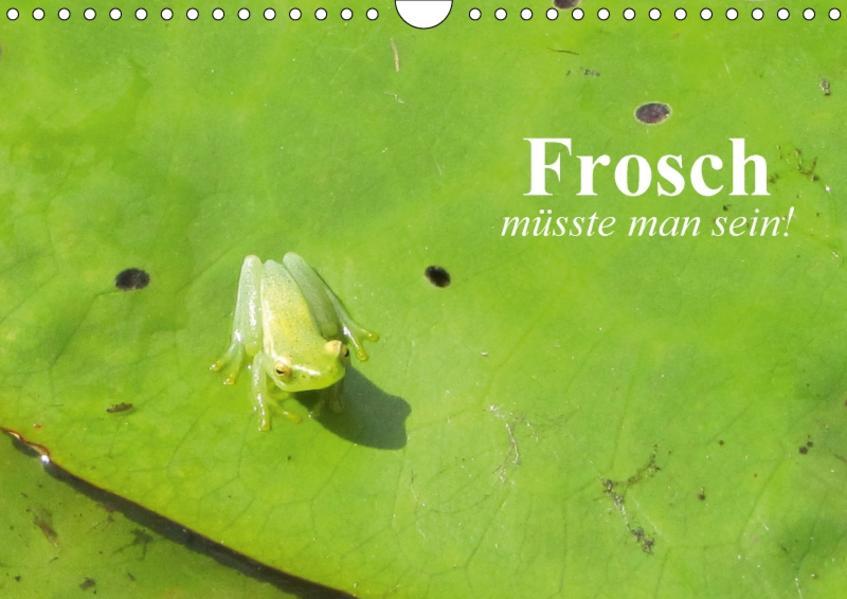 Frosch müsste man sein! (Wandkalender 2017 DIN A4 quer) - Coverbild