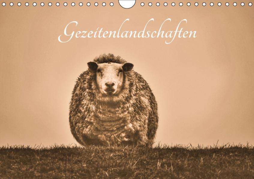 Gezeitenlandschaften (Wandkalender 2017 DIN A4 quer) - Coverbild