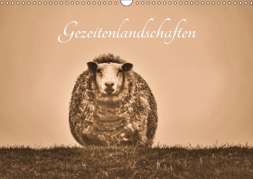 Gezeitenlandschaften (Wandkalender 2017 DIN A3 quer) - Coverbild