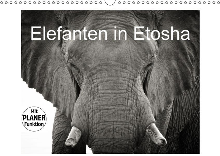 Elefanten in Etosha (Wandkalender 2017 DIN A3 quer) - Coverbild