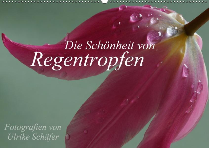 Die Schönheit von Regentropfen (Wandkalender 2017 DIN A2 quer) - Coverbild