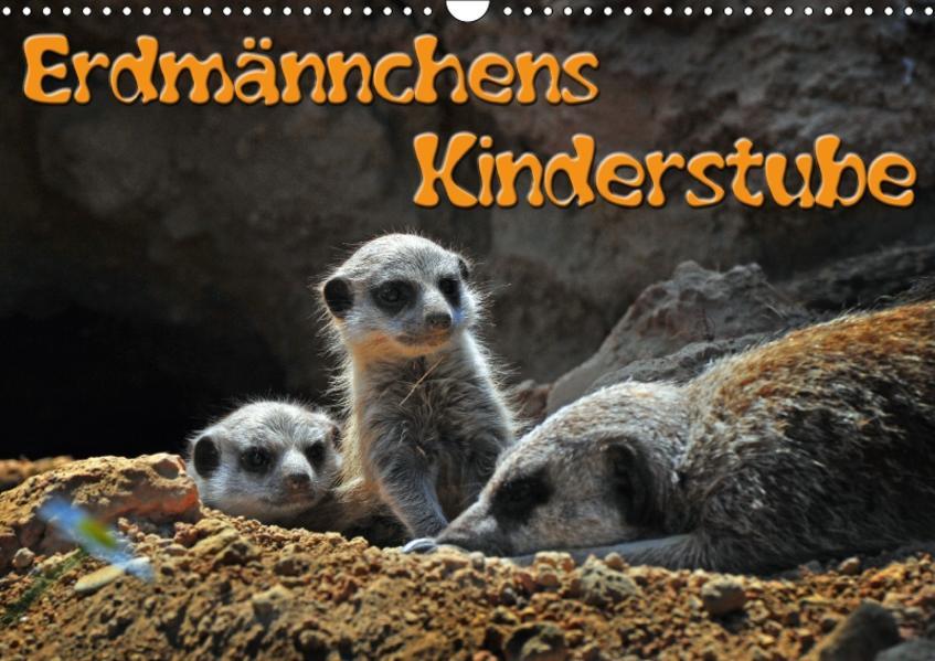 Erdmännchens Kinderstube (Wandkalender 2017 DIN A3 quer) - Coverbild