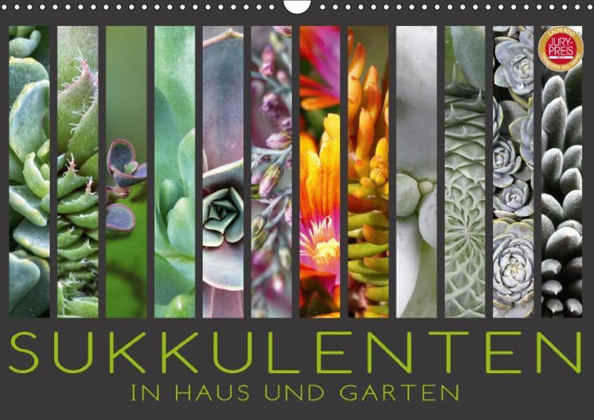 Sukkulenten in Haus und Garten (Wandkalender 2017 DIN A3 quer) - Coverbild