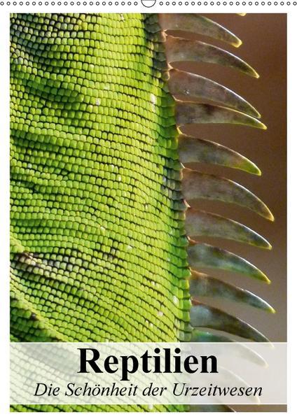 Reptilien. Die Schönheit der Urzeitwesen (Wandkalender 2017 DIN A2 hoch) - Coverbild