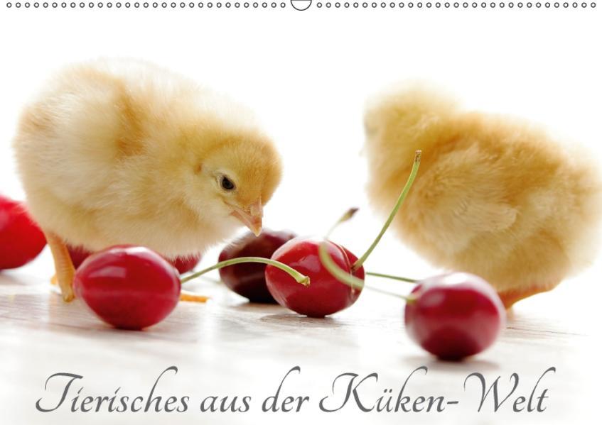 Tierisches aus der Küken-WeltAT-Version  (Wandkalender 2017 DIN A2 quer) - Coverbild