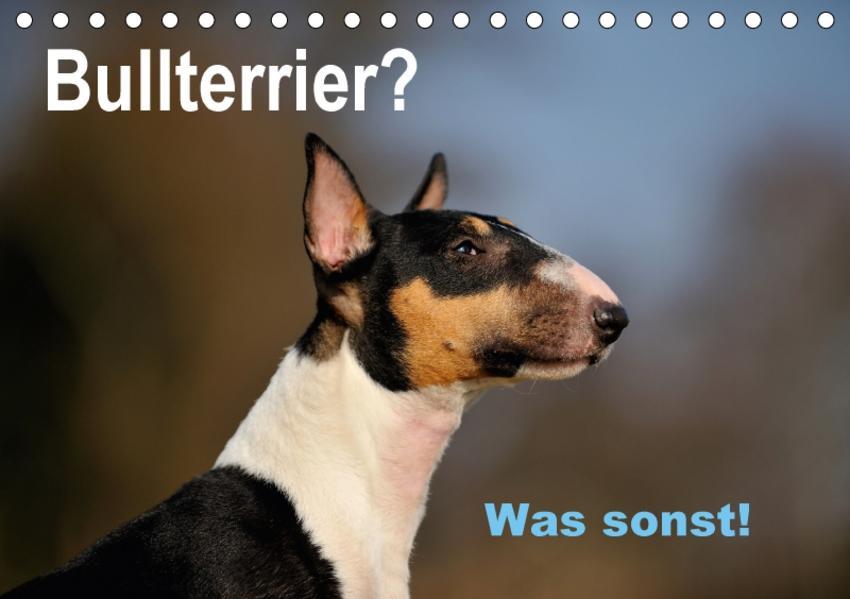 Bullterrier? Was sonst! (Tischkalender 2017 DIN A5 quer) - Coverbild