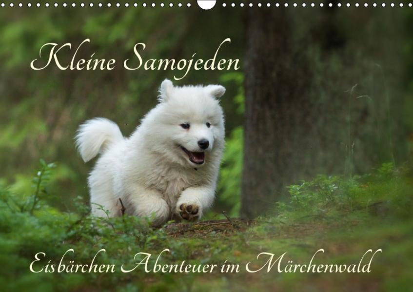 Kleine Samojeden - Eisbärchen Abenteuer im Märchenwald (Wandkalender 2017 DIN A3 quer) - Coverbild