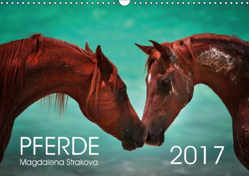 Pferde - Magdalena Strakova (Wandkalender 2017 DIN A3 quer) - Coverbild