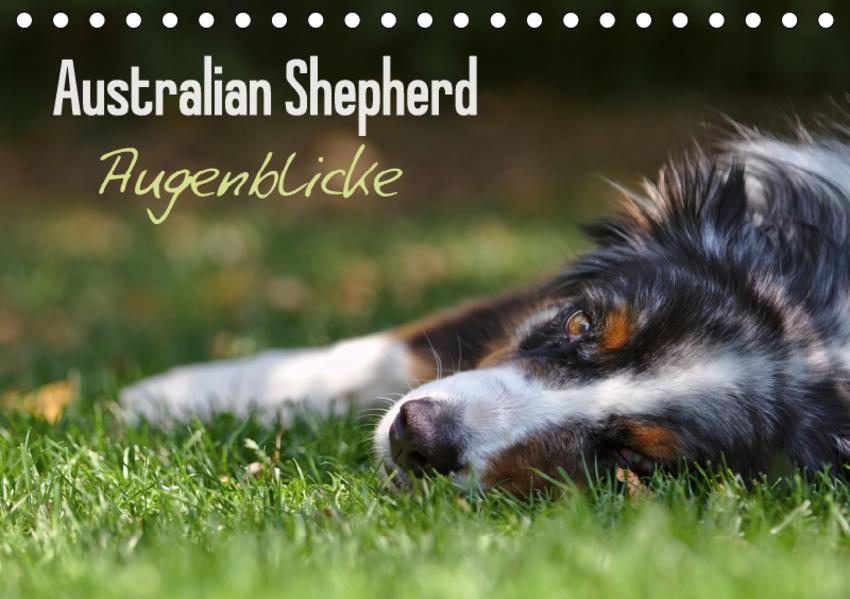 Australian Shepherd - Augenblicke (Tischkalender 2017 DIN A5 quer) - Coverbild