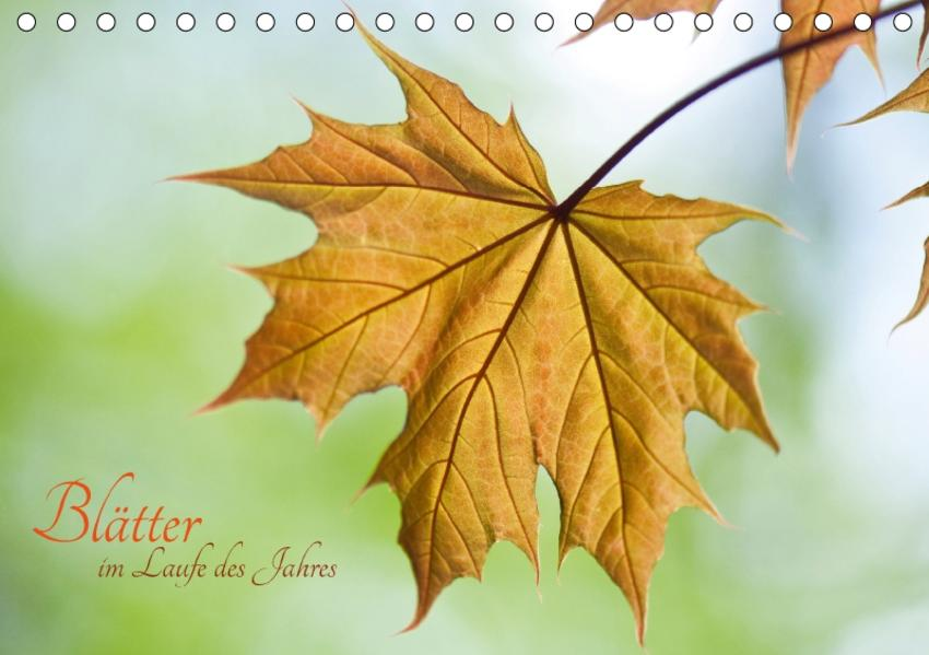 Blätter im Laufe des Jahres (Tischkalender 2017 DIN A5 quer) - Coverbild
