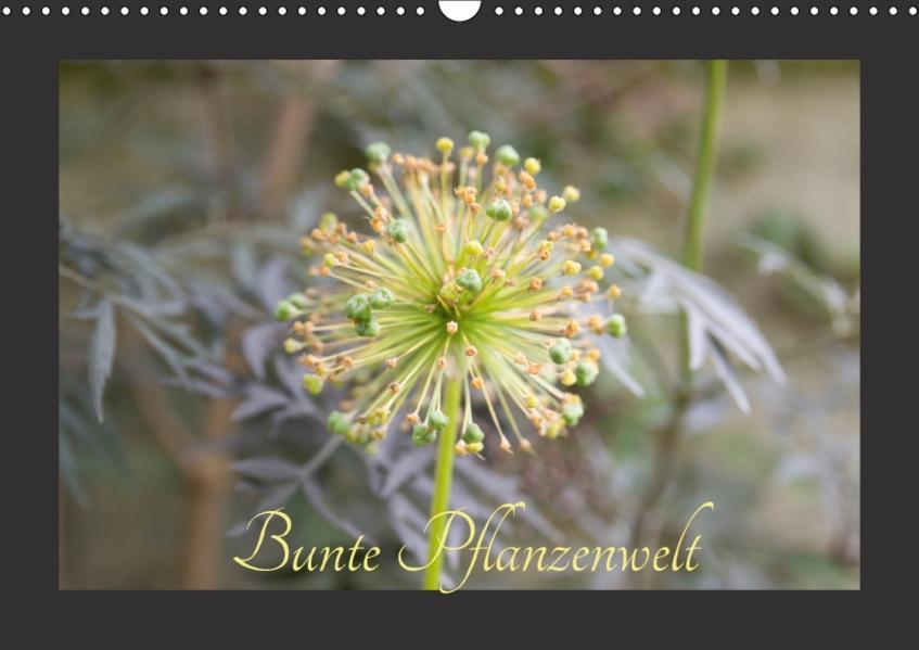 Bunte Pflanzenwelt (Wandkalender 2017 DIN A3 quer) - Coverbild