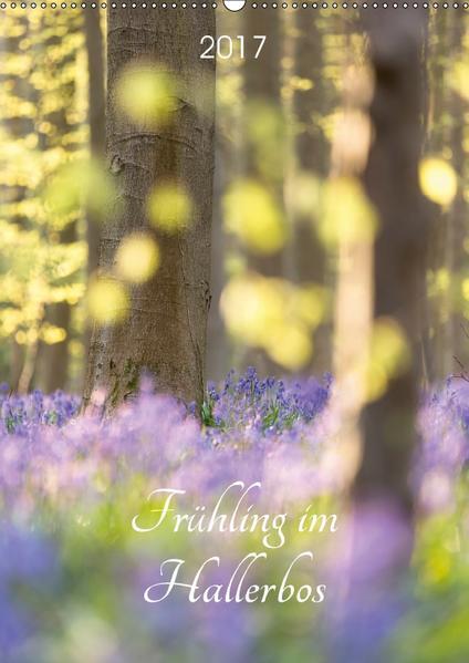Frühling im Hallerbos (Wandkalender 2017 DIN A2 hoch) - Coverbild
